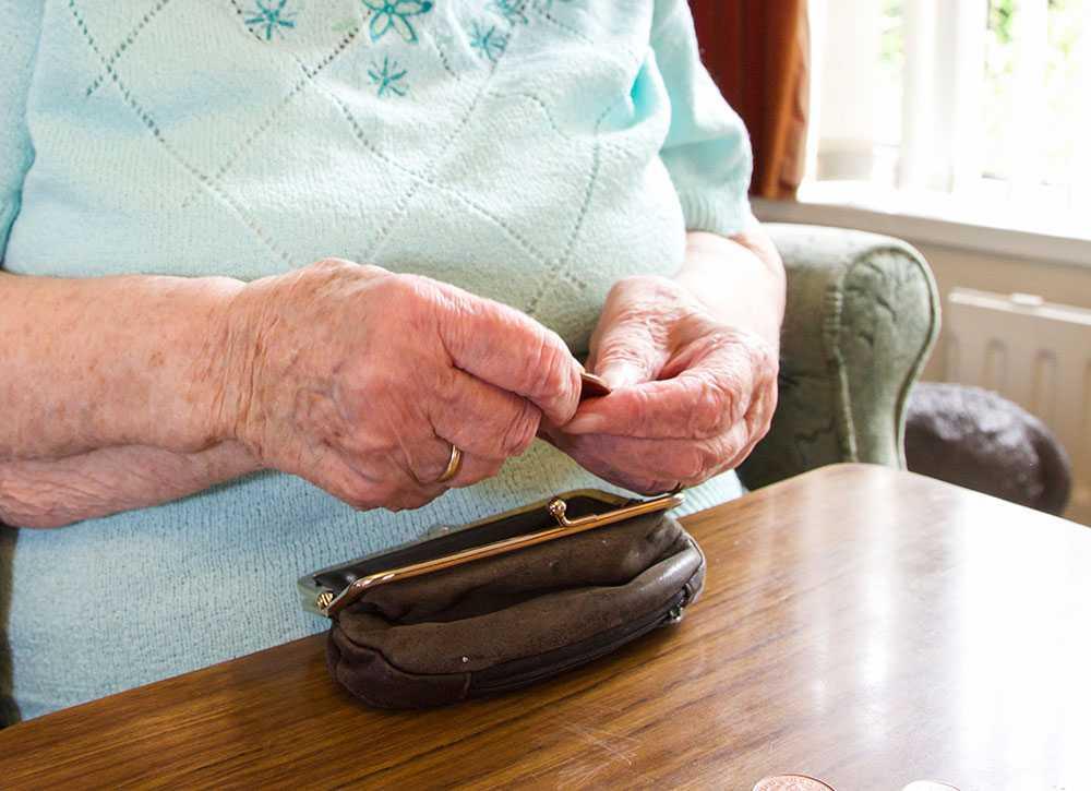 Ankis pension är ungefär hälften så låg som fattigdomsgränsen i Sverige.
