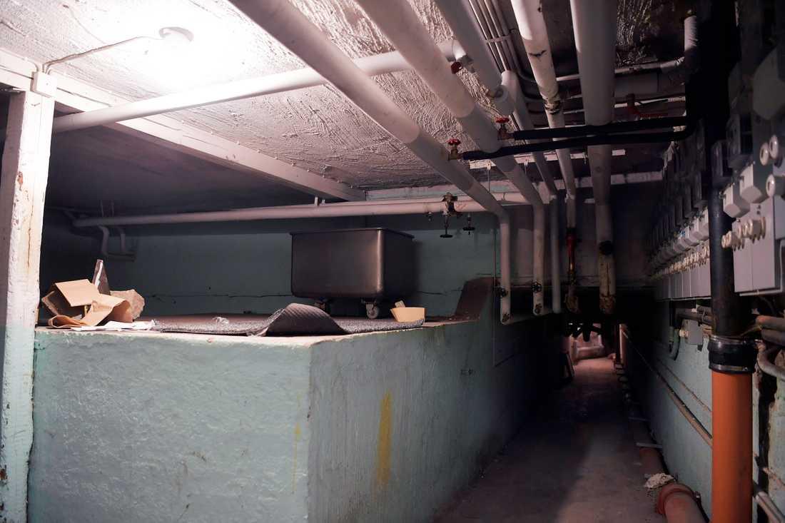 Husets källare har genomsökts av polishund.