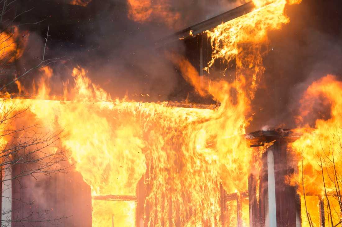 Många kor har bränts inne i en omfattande brand i en ladugård utanför Arvika. Arkivbild.