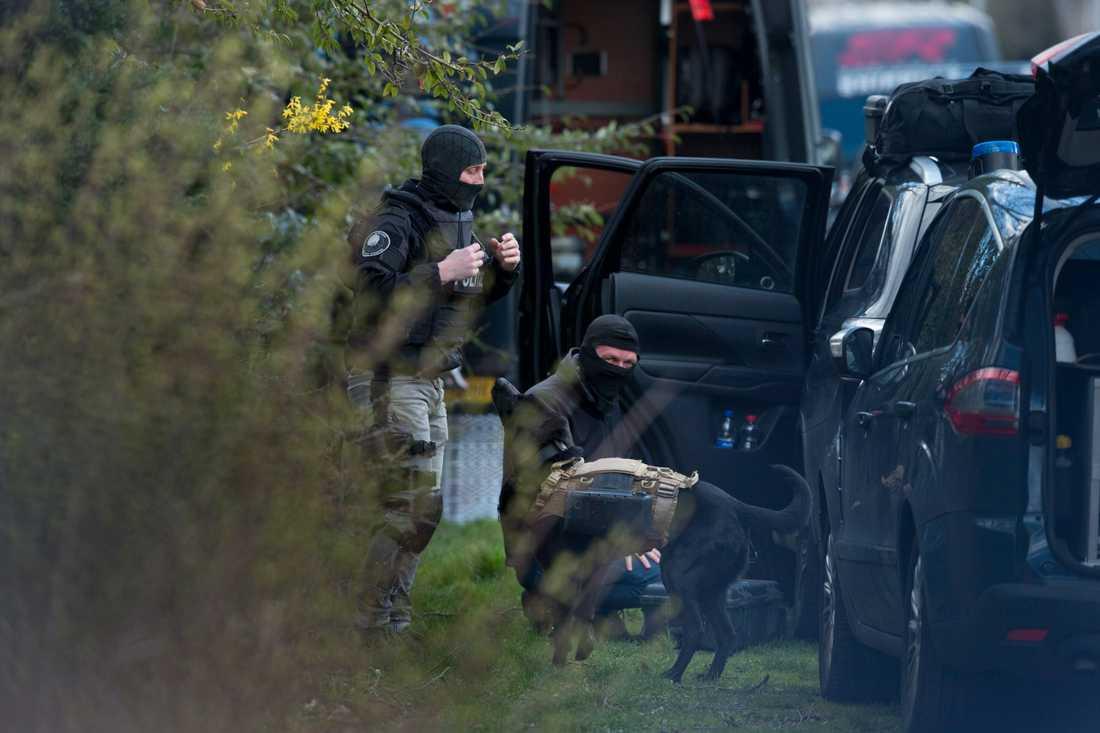 Polisen använde sig av en hund utrustad med en kamera vid undersökningen av en bostad i Utrecht.