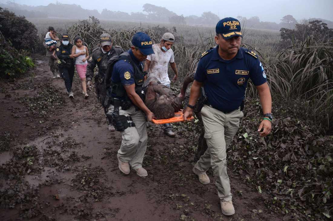 Poliser bär på en skadad efter vulkanutbrottet i byn El Rodeo.