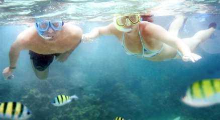 Thailands undervattenliv är fullt av färggranna upplevelser.