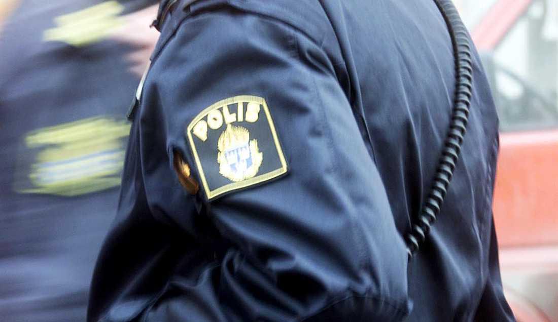 Staten gjorde sig skyldig till etnisk diskriminering när Skånepolisen registrerade romer.