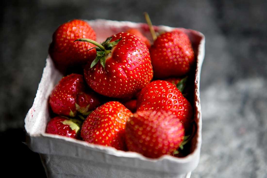 Forskarna vill ta fram bättre råd och tips kring jordgubbsodling. Arkivbild.