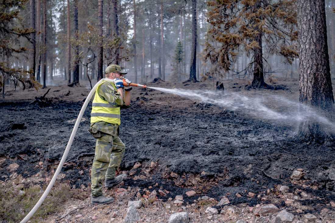 Släckningsarbete vid branden på skjutfältet i Trängslet.