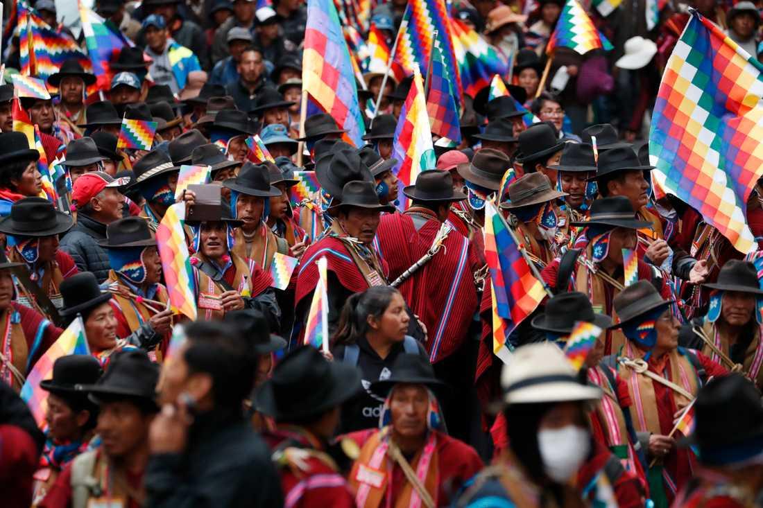 Demonstration i La Paz mot maktskiftet.