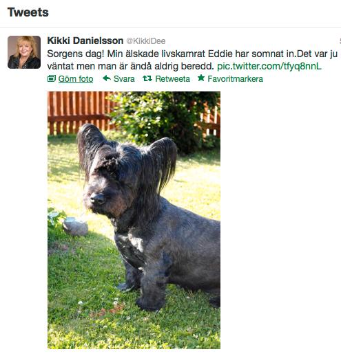 Den här bilden lade Kikki Danielsson upp på sin Twitter under fredagen.