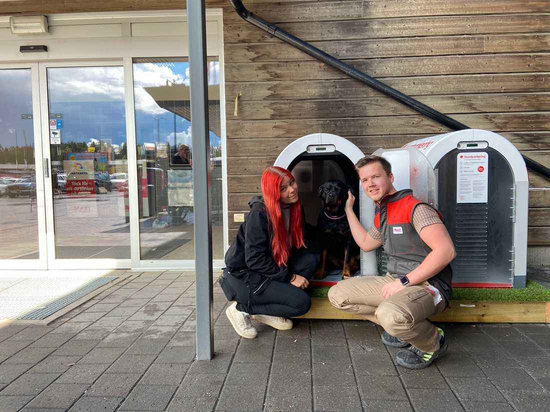 Här får hunden Blaze ta plats i den trygga hundparkeringen. På bild tillsammans med matte Ida och Patrik Nilsson.