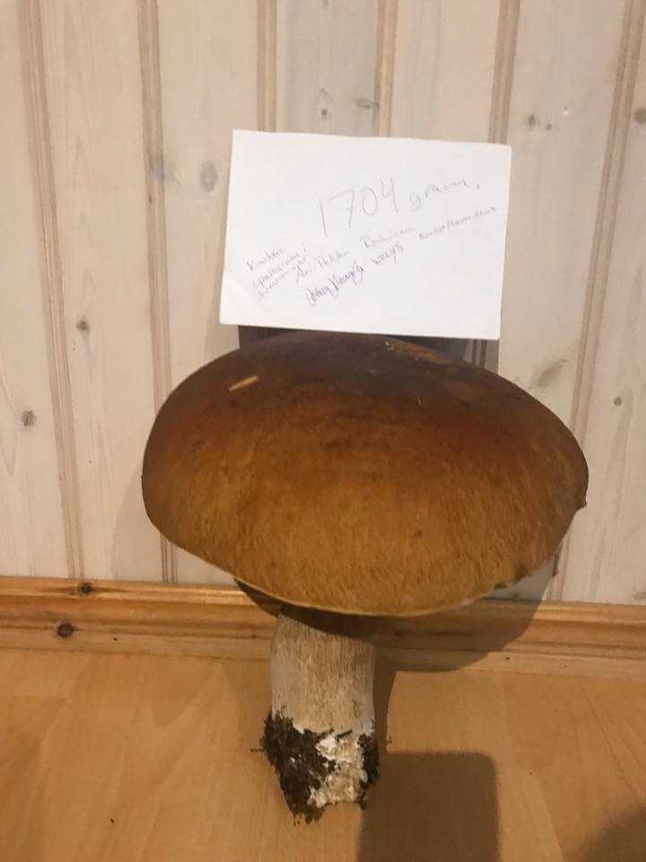 Han har låtit vittnen vara med när han vägde den – som har fått intyga vikten genom att skriva sin underteckning på ett papper.