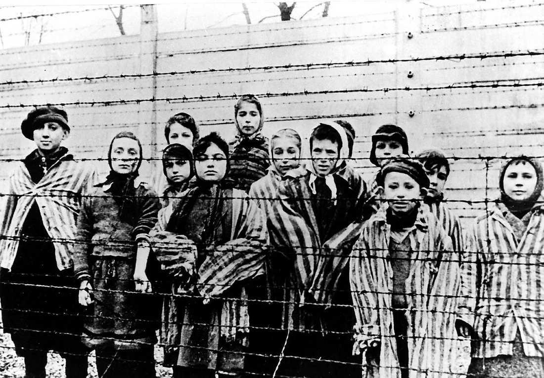 räddades undan gaskammaren Den 27 januari 1945 tågade Röda armén in i Auschwitz och befriade de fångar som fanns kvar. På minnesdagen återvänder många av de överlevande till lägret.