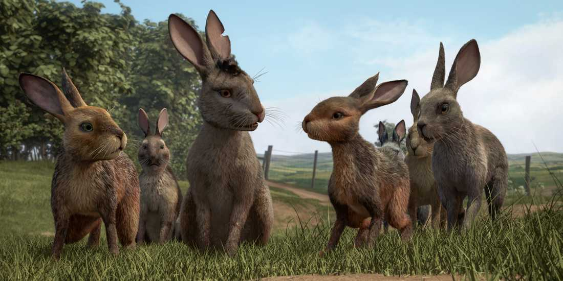 """Watership down""."