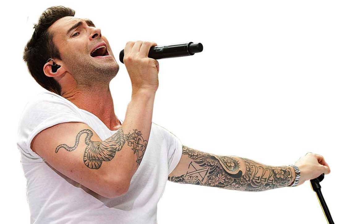 """POPULÄR TV-PROFIL Adam Levine har förutom att vara sångare i Maroon 5 gjort sig ett namn som coach i amerikanska """"The voice""""."""