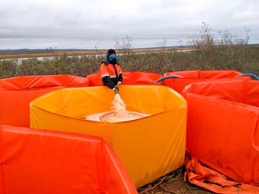 En räddningsarbetare samlar upp förorenat vatten efter olyckan i Norilsk. Bilden är distribuerad av Rysslands marina räddningstjänst.