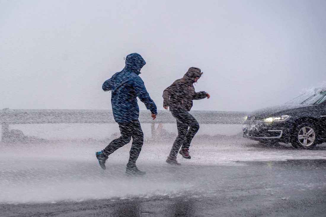 Sydsverige kan vänta sig mycket hårda vindar ihop med regn under torsdagen. Arkivbild.