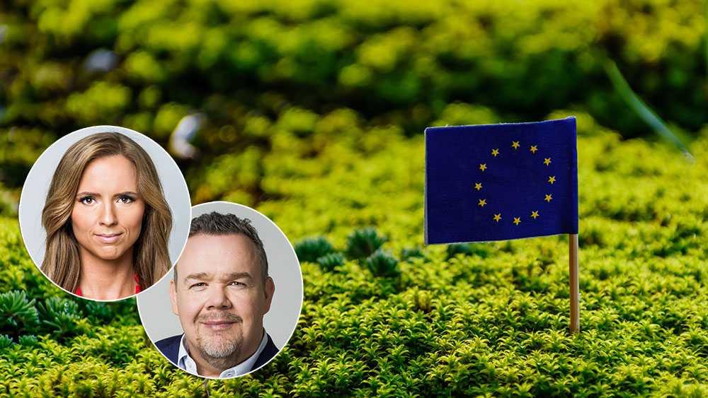 Om vi inte lyckas få med oss Central- och Östeuropa i allmänhet, och Visegradländerna i synnerhet, spelar de höga ambitionerna ingen roll. Europa måste göra den här resan tillsammans, skriver Sara Skyttedal och David Lega (KD).
