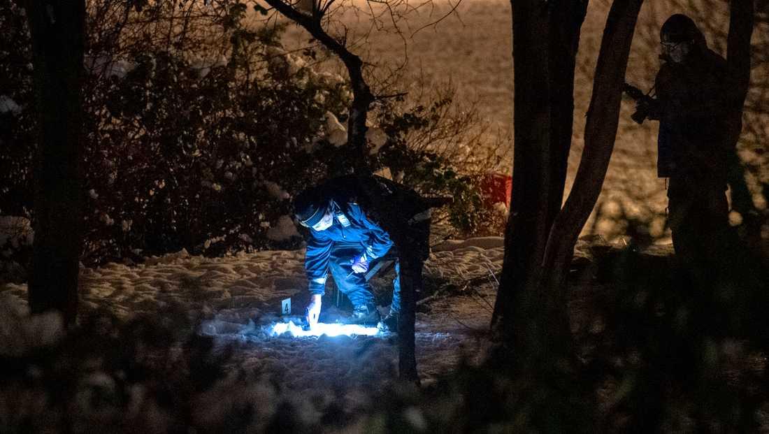 Polisens kriminaltekniker arbetar innanför avspärrningarna mellan Ramels väg och Vänskapsparken på Rosengård i Malmö efter att en man skjutits i låret på julafton. Polisen rubricerar händelsen som mordförsök.