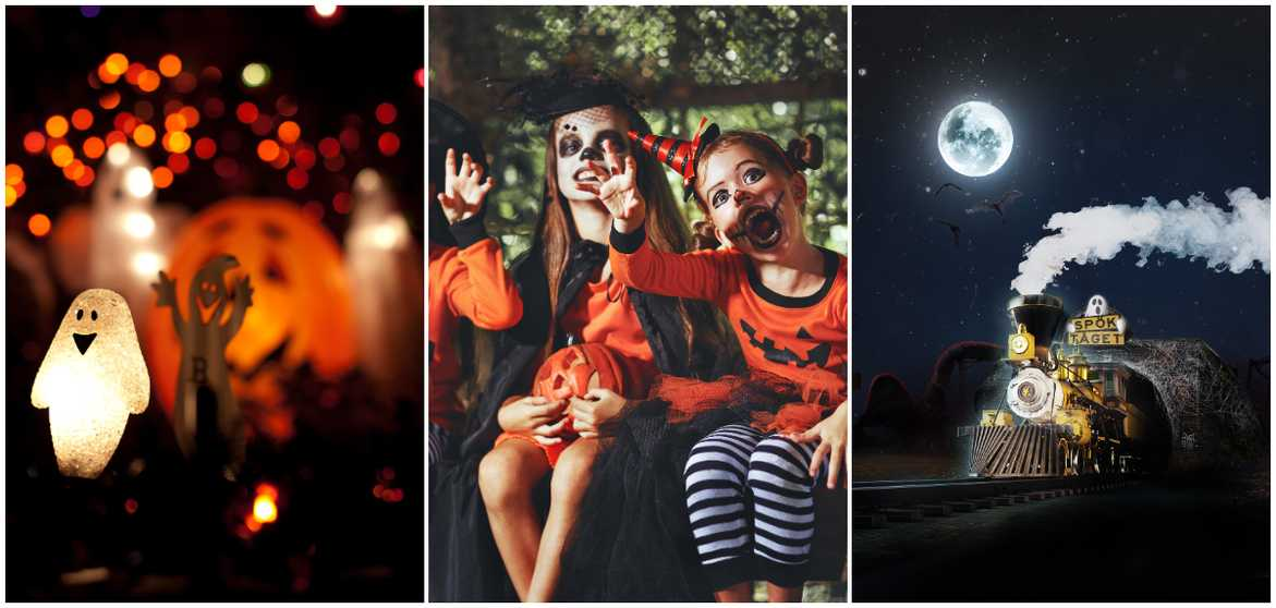 "Scary sommarland ska under halloween bli ""rysmysigt""."