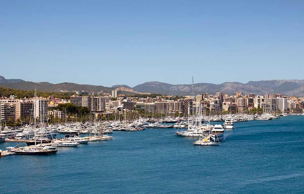 Palma ska få stopp på fulla turister.