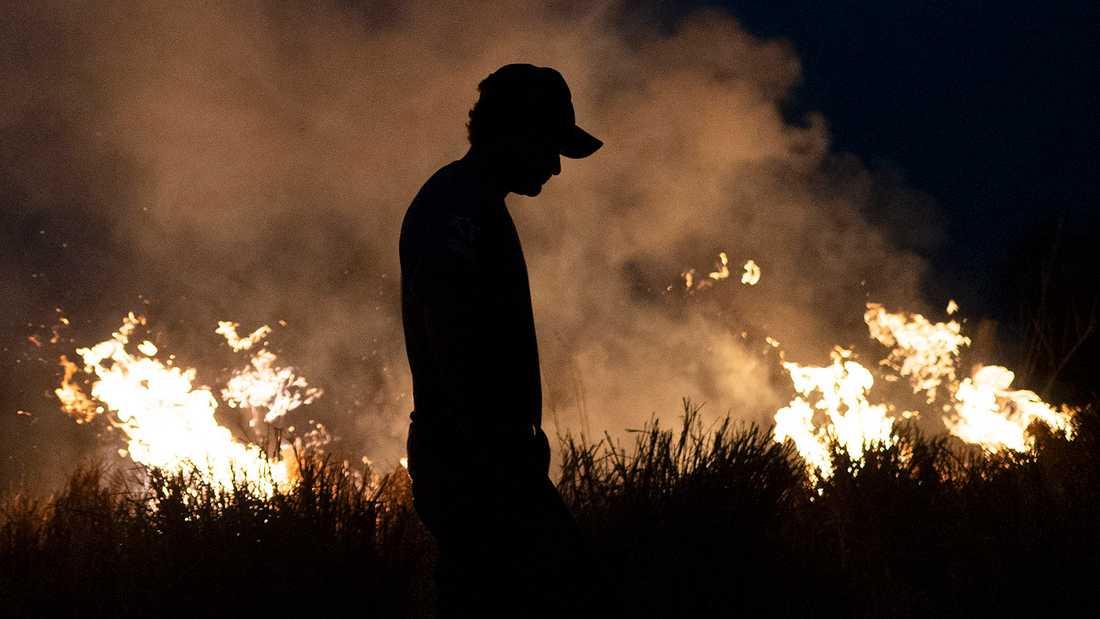 Bränder härjar i Amazonas djungel.