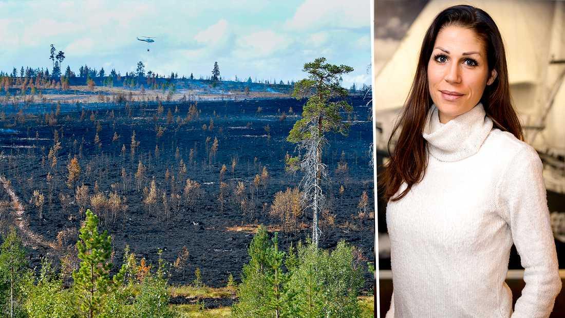 Det är dags att skogsbolagen i Sverige vaknar och förhindrar framtida katastrofer, skriver Lina Burnelius, Greenpeace.