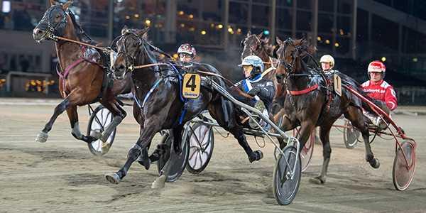Trix On Line tog hem segern i Breeders' Crown och tjänade 175 000 kronor.