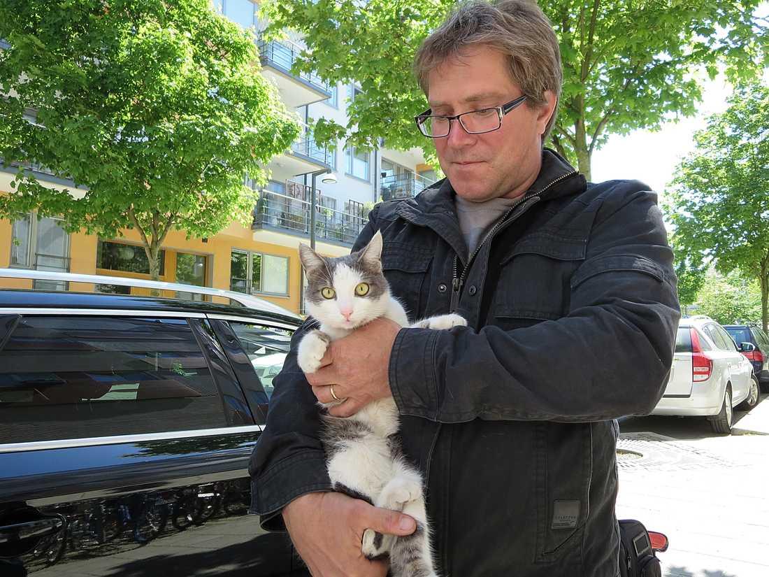 Det var den 17 maj som innekatten Alice rymde hemifrån lägenheten i Kristianstad genom att hoppa ut från balkongen.