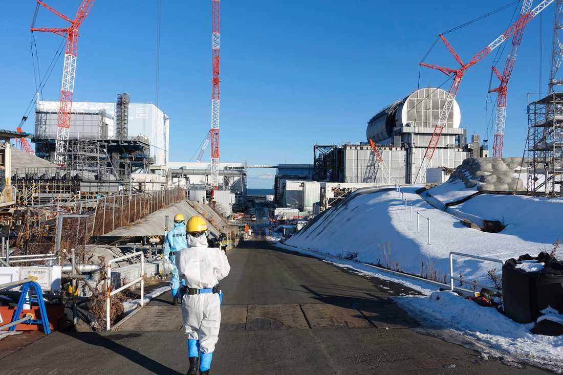 En anställd vid kärnkraftverket Fukushima avled efter att ha blivit utsatt för strålning. Arkivbild.
