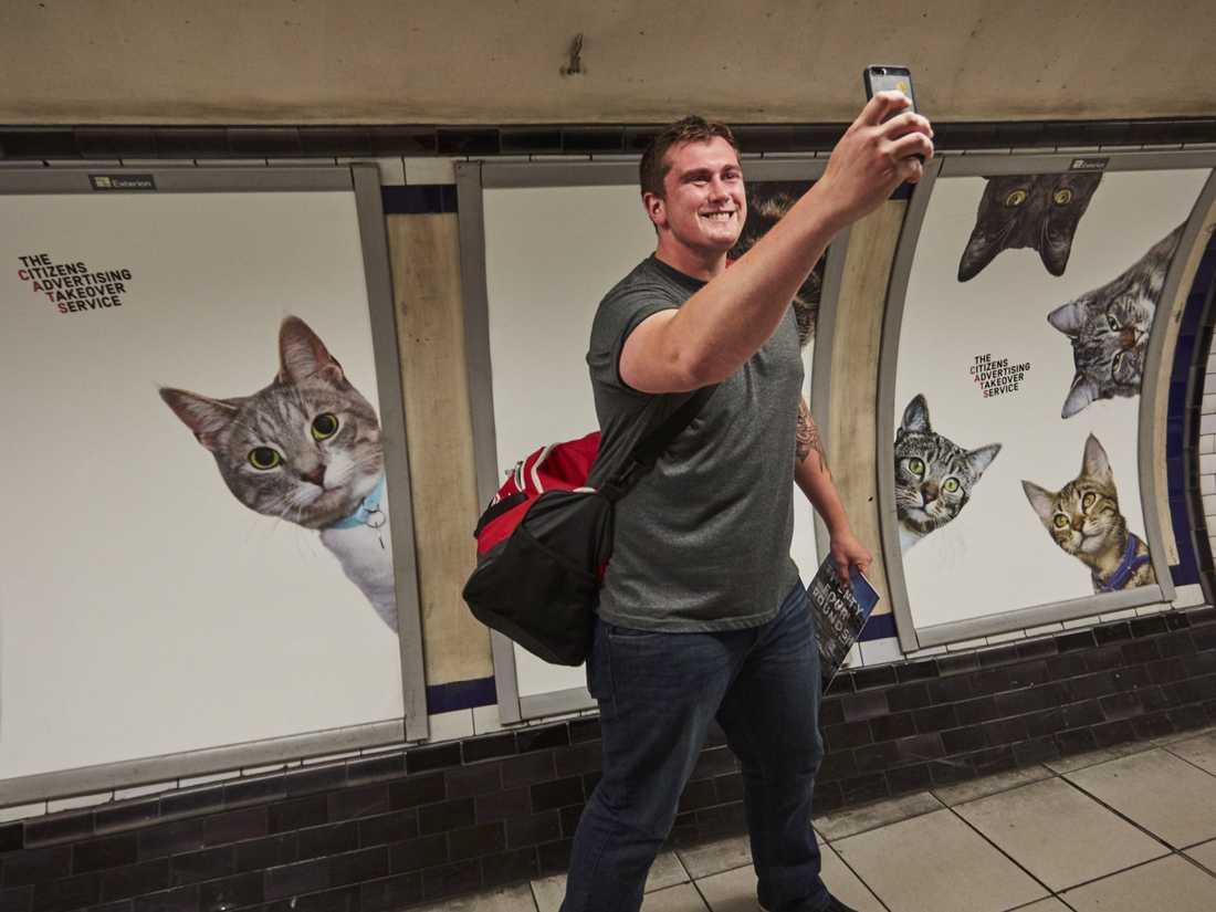 """""""Tänk dig en värld där allmänna platser faktiskt får dig att må bra"""" skriver CATS."""