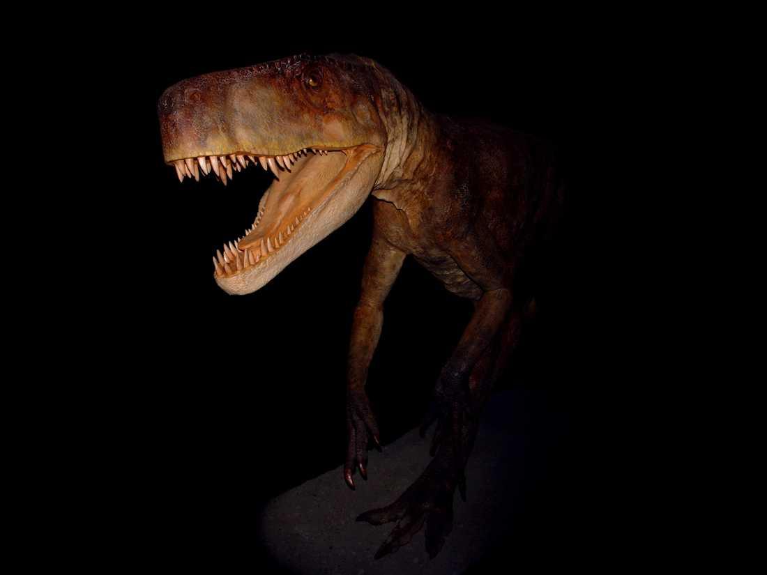 Smok wawelski var det största rovdjuret i Europa för 210 miljoner år sedan.