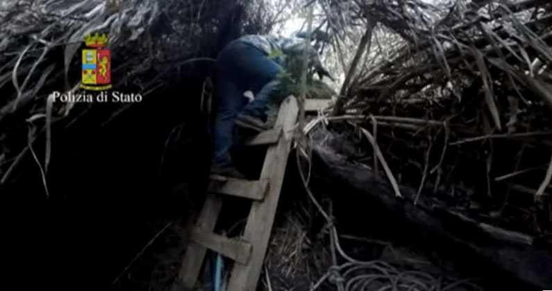 Bunkern var gömd under buskar och träd.