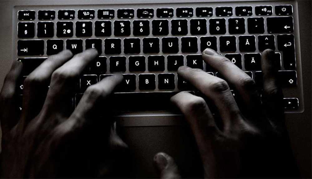Mannen påstår att han förfogar över ett botnet, alltså ett nätverk av hackade datorer, som består av 17 000 maskiner. Det är dessa som han ska ha använt för att angripa Swedbank.