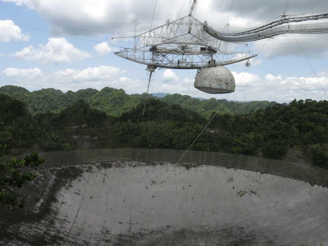 Ett radioteleskop i Arecibo, Puerto Rico, som spanar efter bland annat asteroider på eventuell kollisionskurs med jorden. Arkivbild.