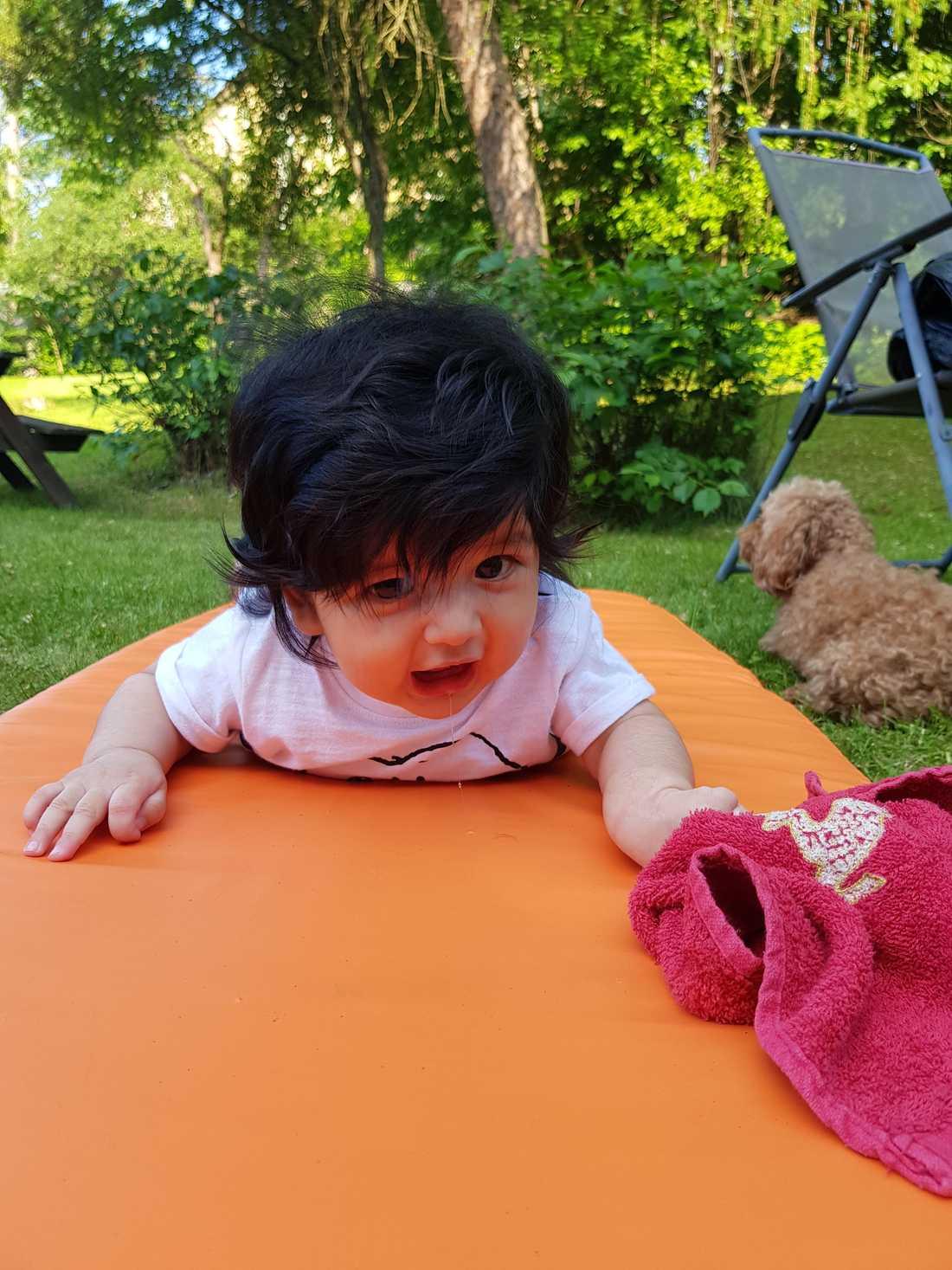 Även Liam, fyra månader, har en redig kalufs. Inskickad av Ricardo Avalos Timble från Karlstad.