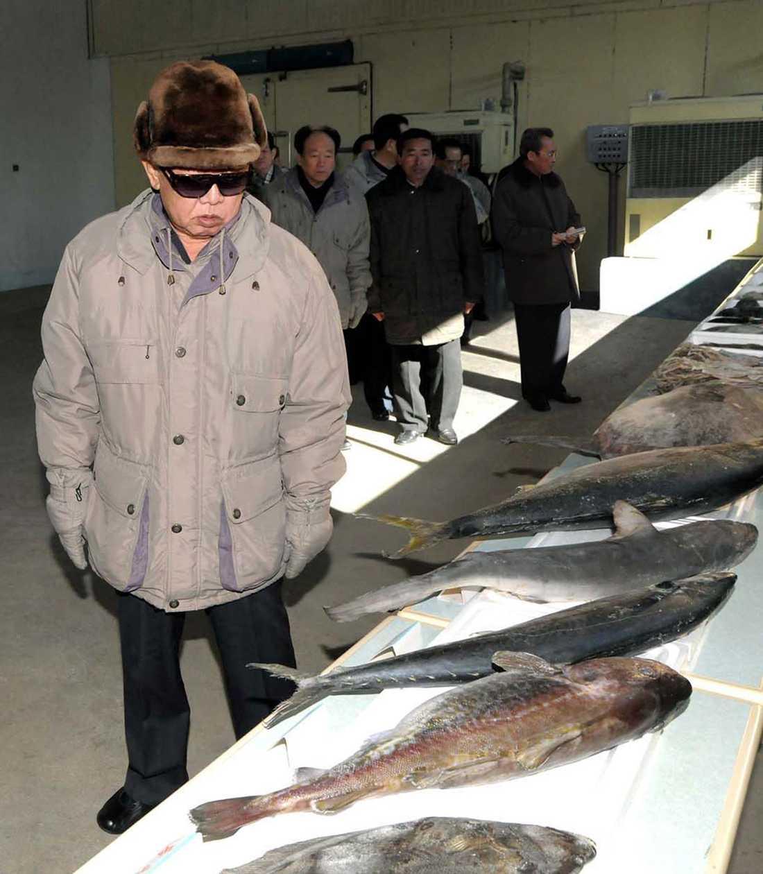 KIM TITTAR PÅ DÖD FISK Ledarens ansikte uttrycker djup medkänsla för de här fina fiskarna som gett sina liv för att föda nationens barn.