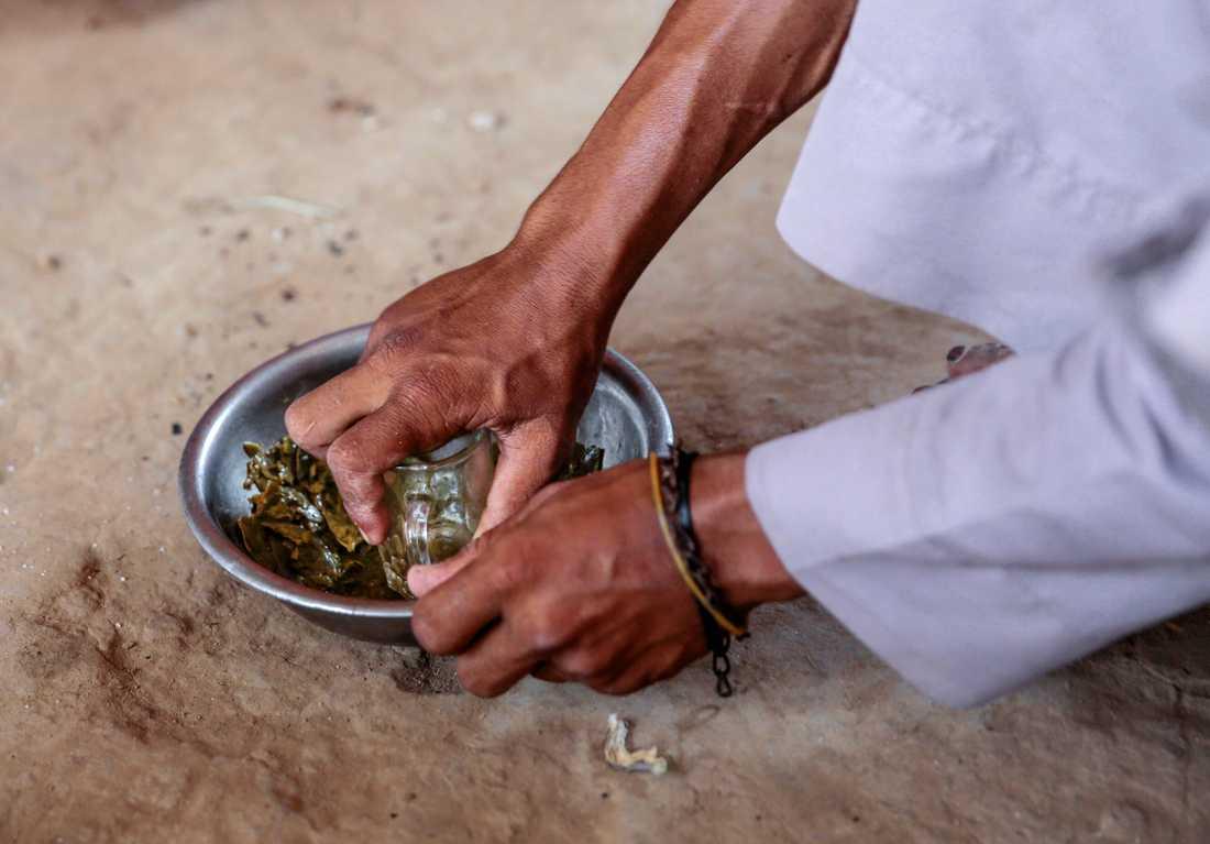 En man i Jemen tillagar en rätt på gröna blad från vinstockar. Bladen är en traditionell sidorätt, men under extrem fattigdom blir den huvudrätt.