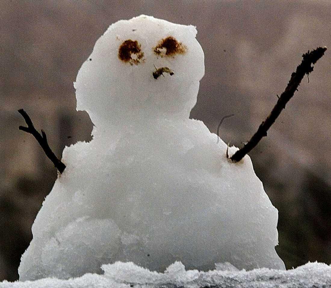 När våra barnbarn blir vuxna finns inga vita jular, varnar SMHI i ny larmrapport