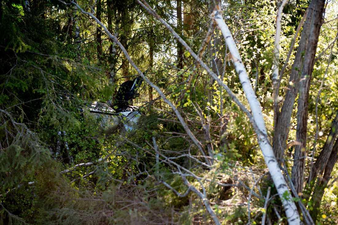 Vid tretiden på natten körde bilen av vägen och hamnade i skogen.