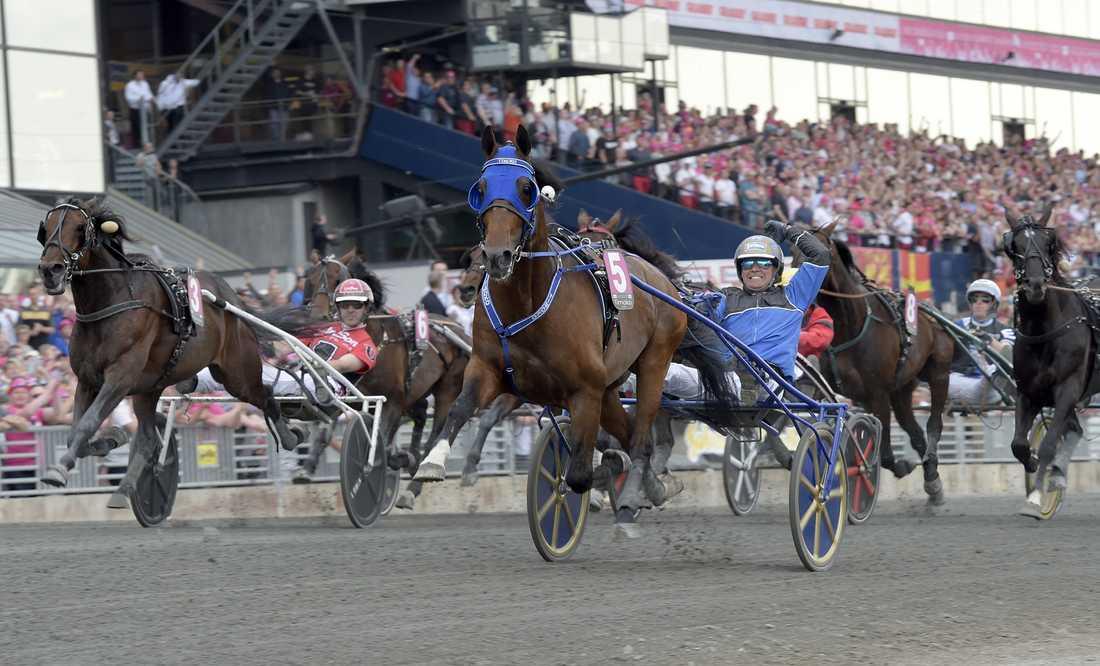 Timoko sprang in över fem miljon euro under tävlingskarriären.