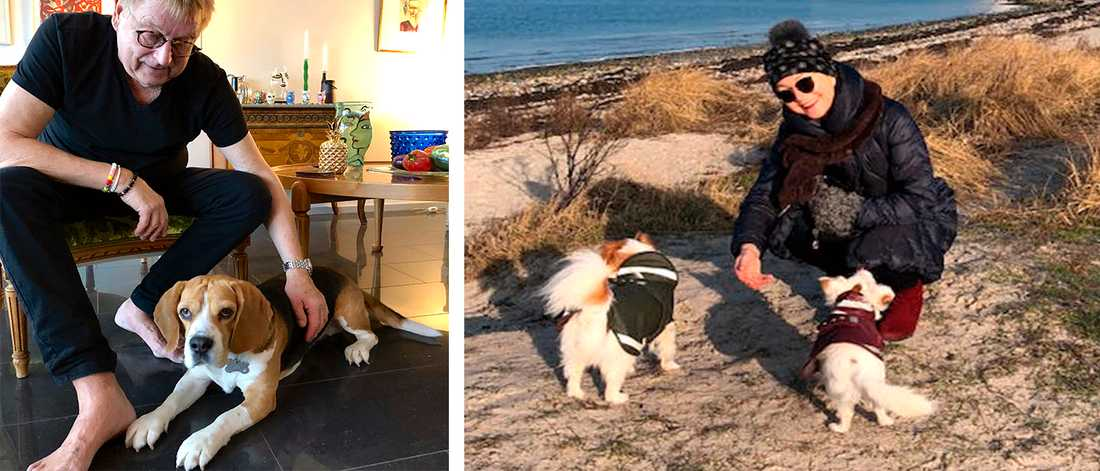 Till vänster husse Jerker med hunden Ture, som inte tycker om fyrverkerier. Till höger matte Ingrid med hundarna Ludde och Wilma, som klarar sig bättre.