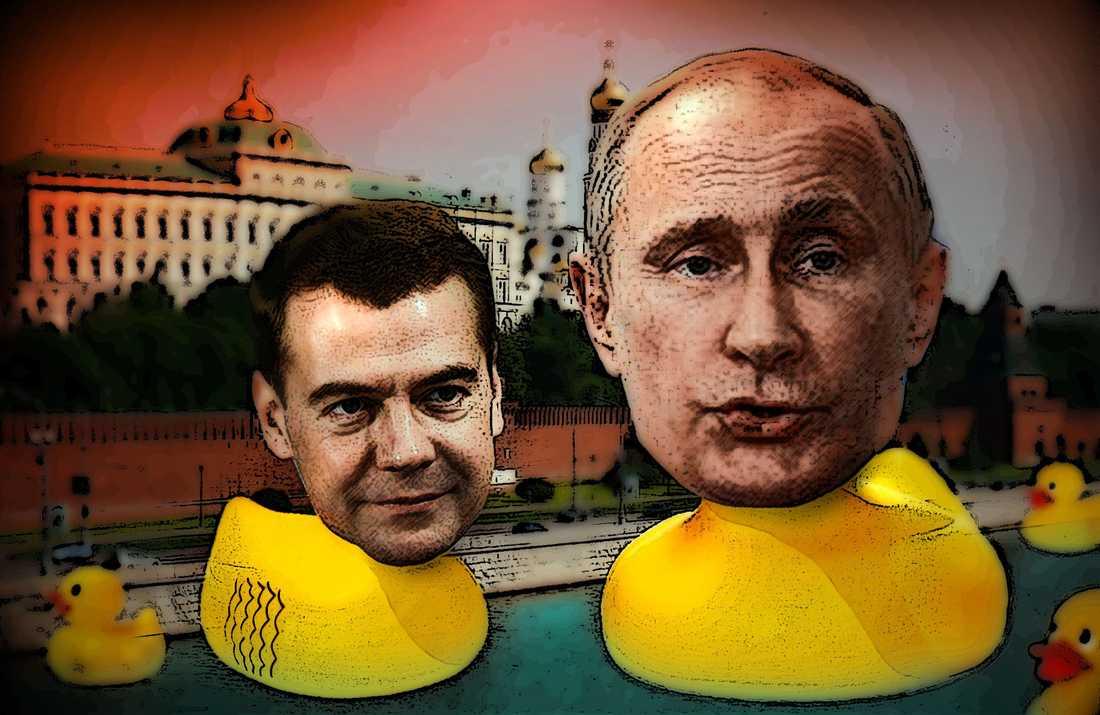 Premiärminister Medvedev byggde ett hus åt sina ankor. Sedan dess har badankan använts för att symbolisera korruptioninom det ryska parlamentet. Illustration: Paul Wallander