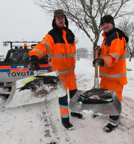 Fick städa Johan Henriksson och Mikael Abrahamsson fick städa upp. Fem säckar blev det.
