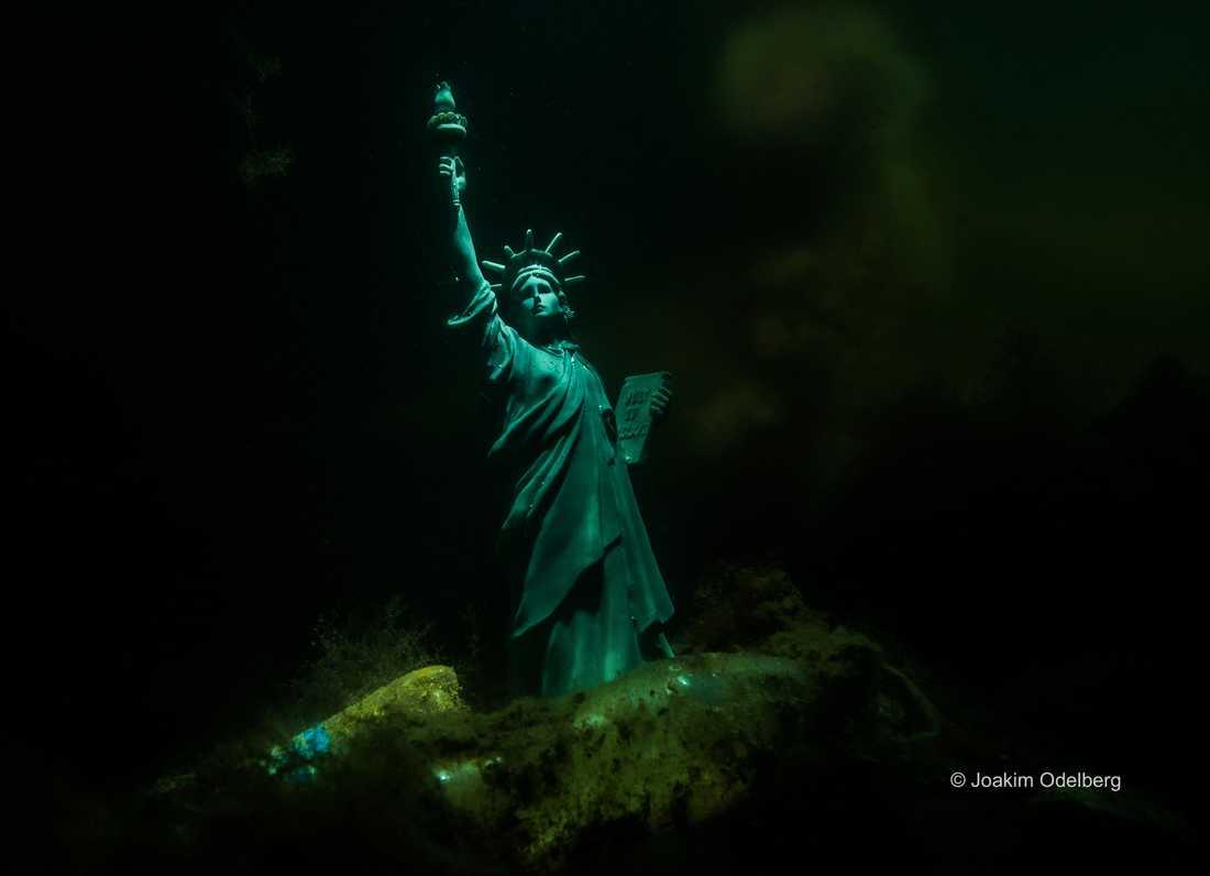 Här är en av bilderna som dyker upp under havskonferensen i New York.