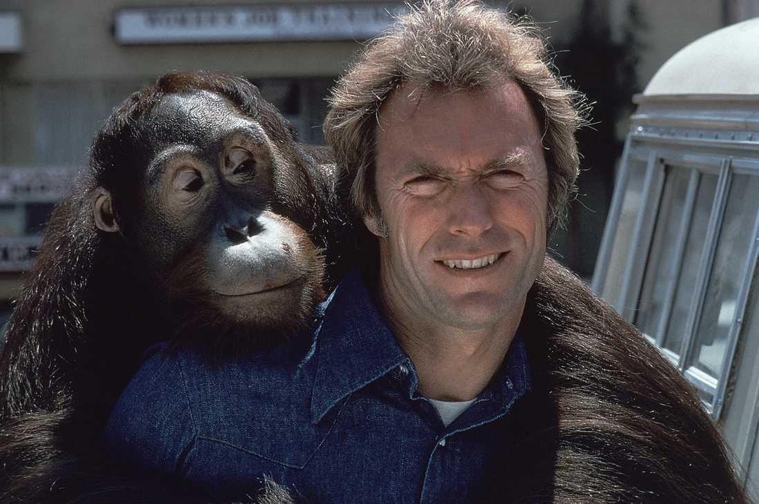Clint med orangutangen Clyde.