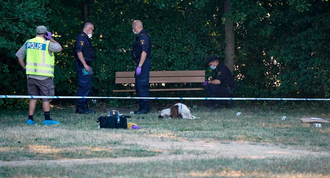 Polis och avspärrningar vid Nydalaparken efter skottlossningen 3 juli förra året. En man sköts till döds och en annan fick livshotande skador men överlevde efter att ammunitionen tagit slut. Dådet kallades ett rent avrättningsmord.