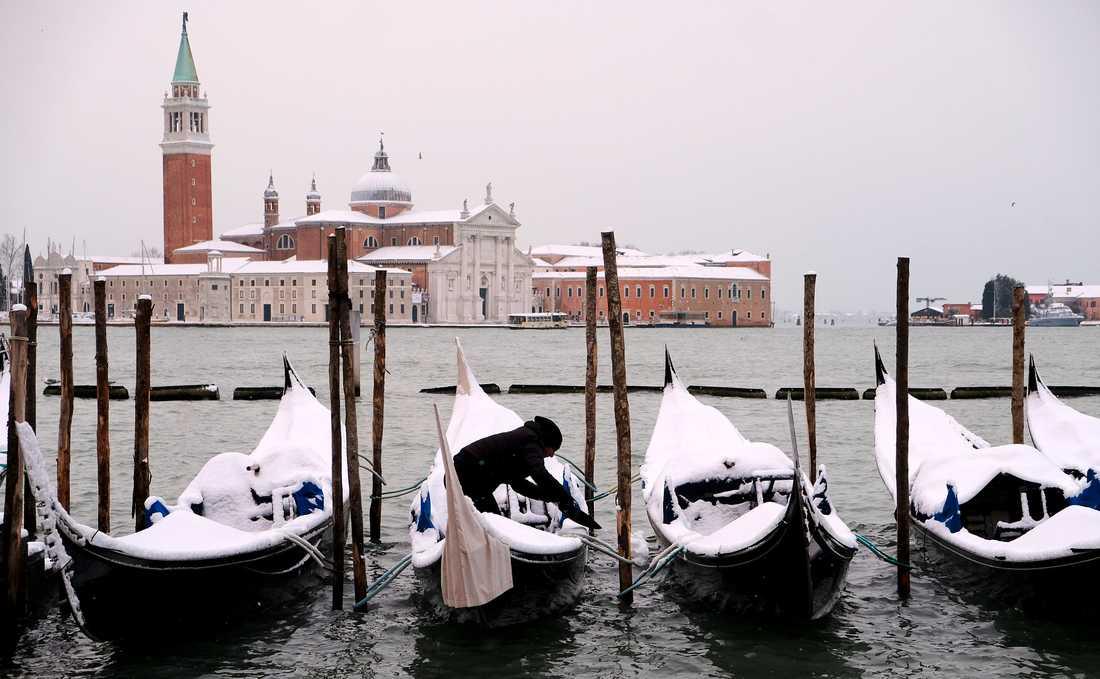 Gondoler i Venedig täckta av snö