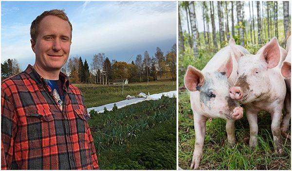 Gustaf Söderfeldt: Människor blir veganer av många olika anledningar. Själv blev jag vegan för att jag inte ville fortsätta slakta grisar.