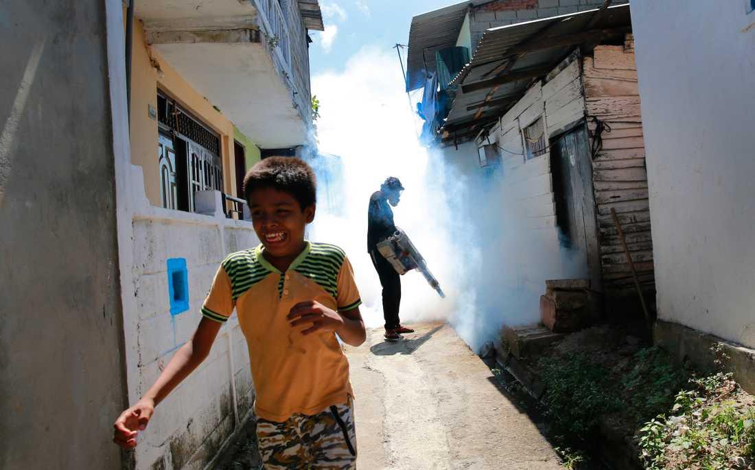 Vid svåra utbrott av dengue används ibland besprutning som metod för att ta död på myggor som bär viruset, som här i Colombo, Sri Lanka, under ett utbrott där 2017.