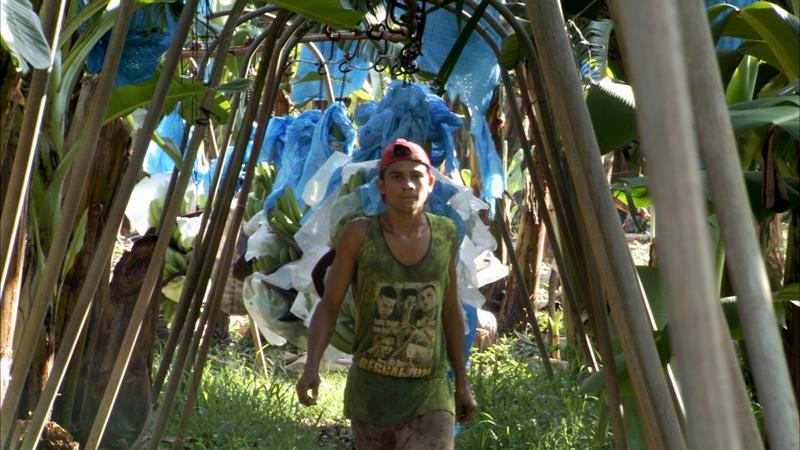"""Fredrik Gerttens film """"Bananas!"""" handlar om hur bananarbetarna i Nicaragua stämmer fruktbolaget Dole för att de utsatts för ett bekämpningsmedel som kan göra människor sterila."""