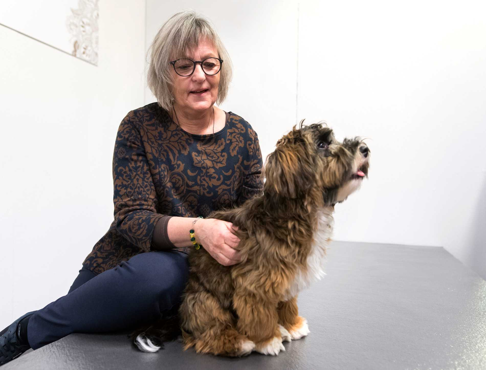 Massagen börjar vid ryggraden, och omkring den. Därefter går massören Margareta Pettersson över hunden steg för steg. Tassarna och benen tas nerifrån och upp. Sist masseras huvudet, nacken och öronen. Sedan avslutar man med att klappa hunden.