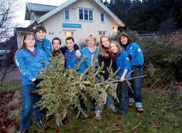 För en avgift på 20 kronor samlade scouterna in julgranar som gjort sitt.